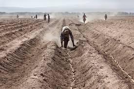 La tratta del popolo Eritreo